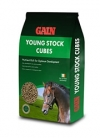 paardenvoer van GAIN Horse Feed (Youngstock Cubes)